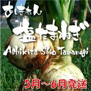 玉ねぎサラダたまねぎ新玉ねぎサラたまサラダたまねぎサラたまちゃん熊本県たかみね農園あしきたん塩たまねぎ5kg