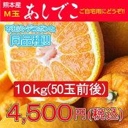 デコポン/でこぽん/不知火/熊本県/熊本県産あしでこ10kg【M玉】