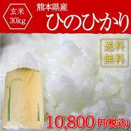 30年/ヒノヒカリ/玄米/ヒノヒカリ熊本ヒノヒカリ玄米30kg
