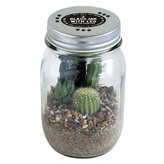 大小︰ L 玻璃罐與 LED 仙人掌