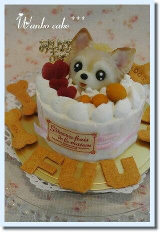 アトリエ ワフ『ワンコケーキ フルーツデコレーションケーキ S』