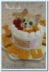 ワンコケーキ*フルーツデコレーションケーキ*S(犬用ケーキ・犬ケーキ・誕生日)[アトリエ ワフ]