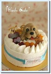 ワンコケーキ*フルーツデコレーションケーキ*M(犬用ケーキ・犬ケーキ・誕生日)[アトリエ ワフ]