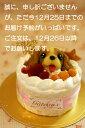 ワンコケーキ*フルーツデコレーションケーキ*S(犬用ケーキ)