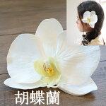 *misuzu*大輪胡蝶蘭髪飾り和婚成人式前撮り袴卒業式結婚式070