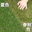 ■安全性検査済み■色までリアルなロール人工芝(芝丈20mm・10m×1m)夏色・春秋色・秋冬色のカラーバリエーションは当店だけ!商品型番:fme-2010