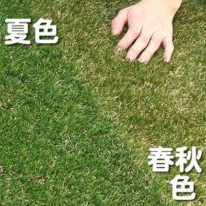 送料無料!色までリアルなロール人工芝(芝丈20mm・10m×1m)