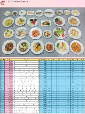 イワイサンプル 糖尿病関連 「主菜2」1式セット/食品サンプル/栄養指導用フードモデル