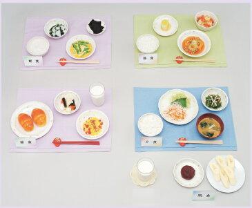 イワイサンプル 心臓高血圧 献立【フルセット Aセット】/食品サンプル/栄養指導用フードモデル