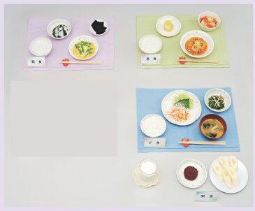 イワイサンプル 心臓高血圧 献立【朝・ごはんタイプ Bセット】/食品サンプル/栄養指導用フードモデル