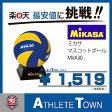 ミカサ MIKASA マスコットボール バレー MVA30サインボール クラブなどの卒業記念品にいかがですか?