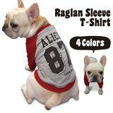 【名入れ】ビッグナンバー 背番号 ラグラン Tシャツ 【犬の洋服 / フレンチブルドッグ パグ 向け 犬 フレブル 服 】【メール便 送料無料】