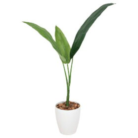 光触媒観葉植物インテリア人工植物フェイクグリーンアートグリーン造花グリーン人工観葉植物おしゃれ玄関観葉植物オフィス贈り物ディスプレイ店舗お祝いリビングダイニングプレゼント引っ越し祝いトラベラーズパーム
