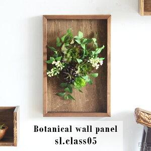 無印良品の「【ネット限定】壁にかけられる観葉植物 16×16cm C」の9ヶ月後