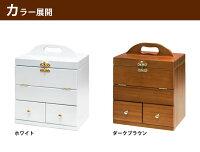 【送料無料】コンパクトメイクボックスKP-2900