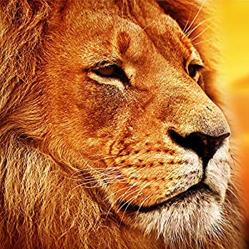 【中古】【輸入品・未使用未開封】Wooden Jigsaw Puzzles - Lion on the African Savannah - 101 Unique Pieces Challenge any Puzzle Lover from ages 8 to 98- Made in the USA画像