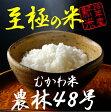 武川米 農林48号 5kg H28年度産 / 山梨県武川産100% ヨンパチ