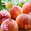 フルーツ王国山梨の中でも桃の品質、味、生産量がトップである一宮町!保坂さん家の「美味しい...