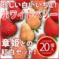 【グルメSHOP-2】 山梨県産いちご(紅白、あかねっ娘)