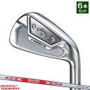 【メーカーカスタム】 ホンマゴルフ TR20 V アイアン N.S.PRO 850GH 5〜10 (6本セット) 日本正規品 HONMA 本間ゴルフ TR-20