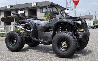 フルサイズ 極太タイヤ 前後大型キャリア付送料無料 ATV バギー50cc