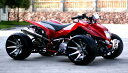 前後Wディスクブレーキ、デフ付ローダウンバギー ブラック&レッドバギー ATV カスタム50cc 1...
