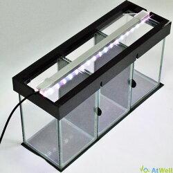 LEDライト付きベタ水槽(5部屋)