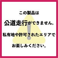 【国内メーカー】電動キックボードキックスクーターCityblitz090折りたたみLEDライト