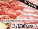 福袋【送料無料】和牛カルビと豚バラ肉の焼き肉セット バーベキュー焼き肉 BBQ 牛肉生肉ギフト...