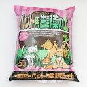 asap猫の生野菜 6回分 ドギーマンハヤシ ASAPネコノナマヤサイ6P