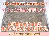 【九州工場直送】カブトムシ幼虫マット・カブちゃん幼虫マット 80L(カブトムシ幼虫用マット)「同梱不可」【売れ筋】