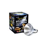 ソラリウム50W交換球