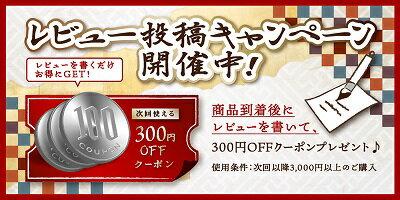 [日本全国送料無料・税込新品]HiKOKI(旧:日立工機)家庭用高圧洗浄機FAW95【代引発送不可】【ポイント消化にどうぞ】