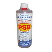 PSB++1L-486