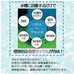 水質浄化活性石水槽用バクチャー(淡水用)60L用水質調整剤水槽の水換え不要1年間※他商品同梱不可