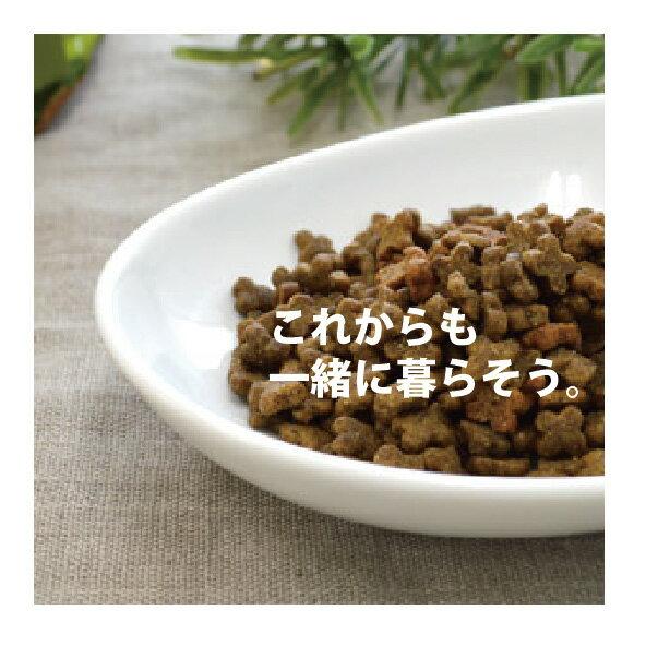 ナウフレッシュ スモールブリード アダルト 11.3kg☆おやつサプリorおもちゃプレゼント☆
