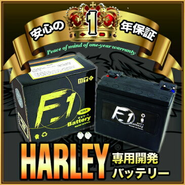 【1年保証付き】 F1 バッテリー 【SPORTSTER Series(XL XLH) スポーツスター/99〜用】バッテリー[65989-97A] 互換 ハーレー用 MFバッテリー 【HVT-1】 キャッシュレス5%還元