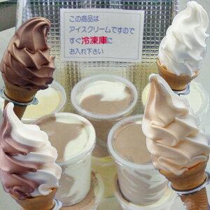 170mlカップに入れて発送いたします【送料無料】ソフトクリーム12個セット♪「バレンタイン」「...