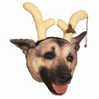 トナカイのツノ 犬用仮装グッズ クリスマス