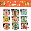 サタケ マジックライス9種×1食