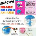 送料無料 犬猫用転がすとおやつが出るおもちゃプチトリートボール青 ペット用品おもちゃ 楽しいペット用品おもちゃ 便利なペット用品 Fa140 3