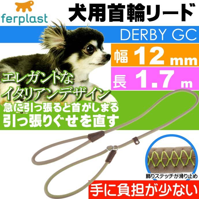 犬 首輪 リード 引っ張ると首がしまる 幅12mm長1.7m 緑 ペット用品 ferplast GC12/170 適応体重60kgまで 大型犬~超大型犬 Fa5165
