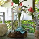 バリガラス×古木の花瓶(L)(白いストーン付き) 【 花器 フラワーベース 一輪挿し プランター バ ...