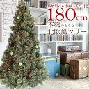 クリスマスツリー 180cm おしゃれ 北欧 松ぼっくり付き 2019年枝増量バージョン ヌードツリー もみの木 1.8m 単品 【オーナメント LED ライト 飾り なし】の商品画像