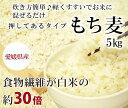 もち麦(押し) 5kg 愛媛県産白いもち麦 当店オリジナル雑穀米 ダイエット 国産 大麦 もちむぎ 食物繊維 押してある もっちり ご飯 健康 美肌効果 穀物 低カロリー 美肌 簡単 もちもち ダイエット効果 食品 食べ物 もち麦ごはん おいしい 国産 5キロ