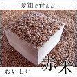 赤米 熊本県産 300g もち赤米 無農薬 雑穀 もち赤米 雑穀米 たんぱく質 ビタミン ミネラル 日本 国産 米 あっさり 食べ物 食用 ご飯 おいしい 料理 パエリア 食卓