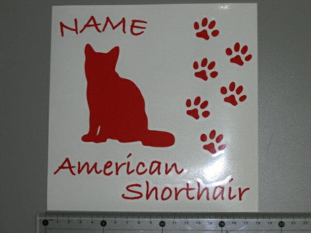 名前入り猫 キャットステッカーソマリCタイプ