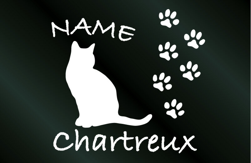 名前入り猫 キャットステッカーシャルトリュー