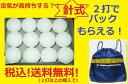 【ソフトテニスボール/軟式テニスボール】今ならバックもらえる♪★軟式テニスボール 【針式・...