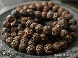 ANTIQUEチベット菩提樹ルドラクシャビーズ一連1,とんぼ玉,アンティークビーズ